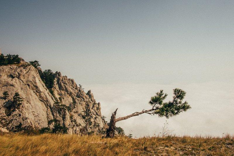 крым, горы, облака Ай-Петриphoto preview