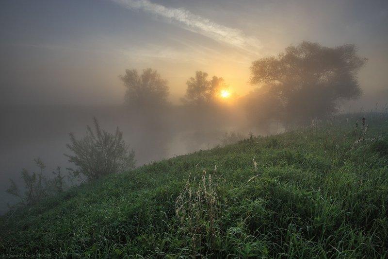 2019, россия, пейзаж, утро, рассвет, солнце, туман, трава, роса, паутина, берег, река, деревья, облака Разгоняя мглу...photo preview