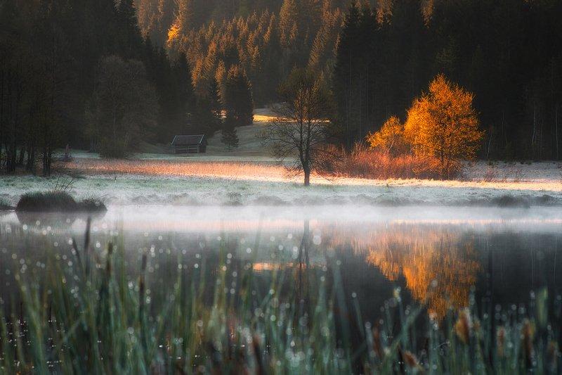 landscape,lake,bavaria,morning,sunrise,germany,nature Geroldseephoto preview