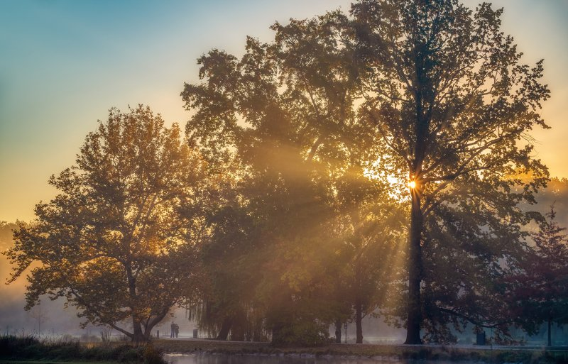 природа пейзаж вода туман утро рассвет осень небо солнце деревья отражения озеро парк Первые лучиphoto preview