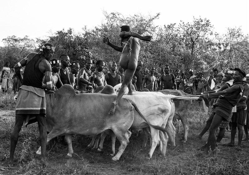 Традиции, свадьба, Эфиопия, Африка,племена Прыжковая церимонияphoto preview