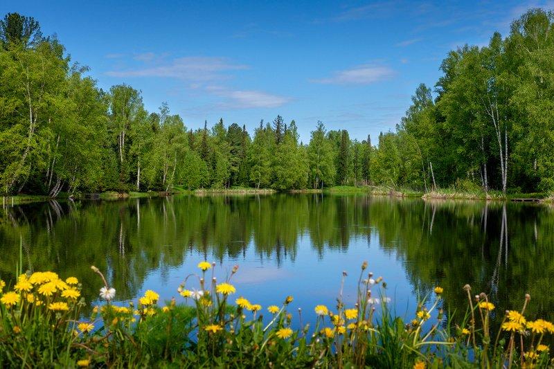 лето, вода, пейзаж  Отражение. photo preview