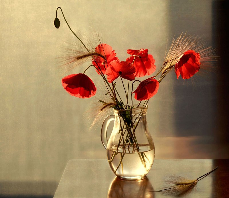 натюрморт, цветы, букет, маки, кувшин Макиphoto preview
