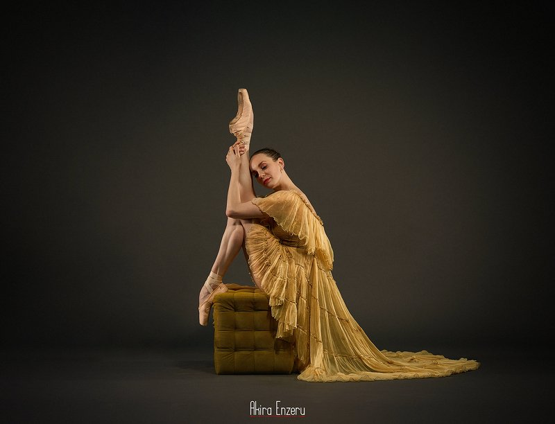 ballet, ballerina, dance ****photo preview