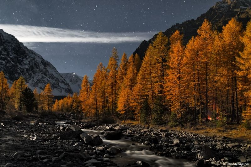 алтай, altai, осень, autumn, горы, mountains, night, ночь Время считать звёздыphoto preview