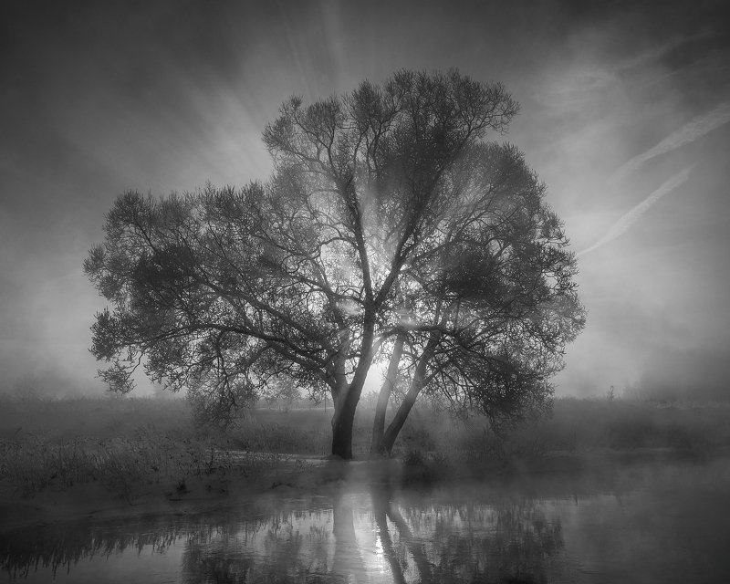 Черно-белый рассветphoto preview
