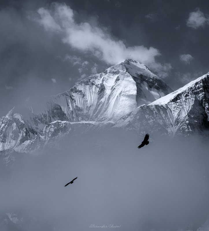 гималаи, непал, дхаулагири, альпинизм, восхождение, пейзаж, горы, природа, вершина, гора Выше только звездыphoto preview