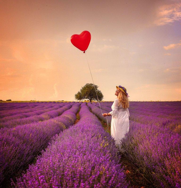 Landscape  Lavender Lovephoto preview