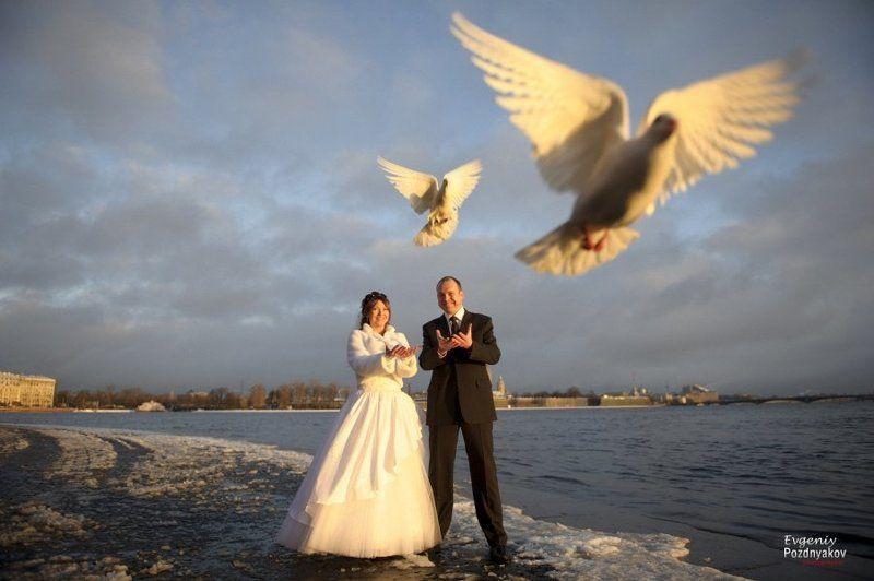 свадьба, свадебный фотограф, фотограф на свадьбу, евгений поздняков, http://fotoevgeniy.ru/ ***photo preview
