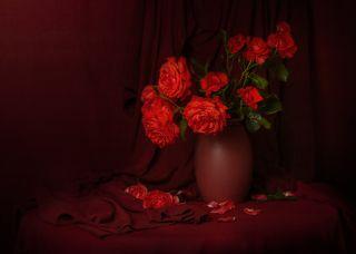 Время цветения роз...
