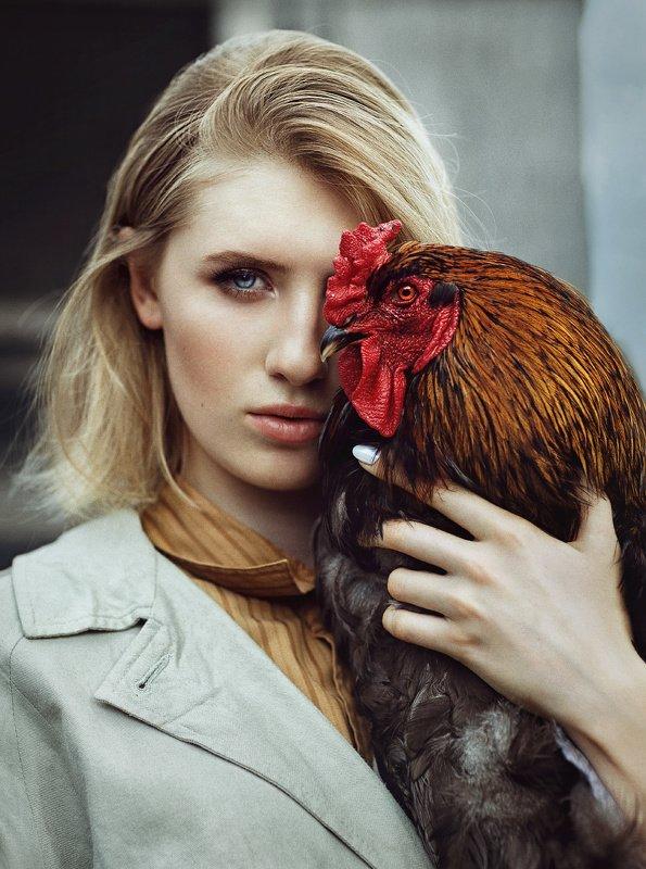 женский портрет, взгляд, петух, девушка, фэшн, гламур, портрет, птицы Полинаphoto preview