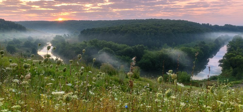 Летним утром возле речкиphoto preview