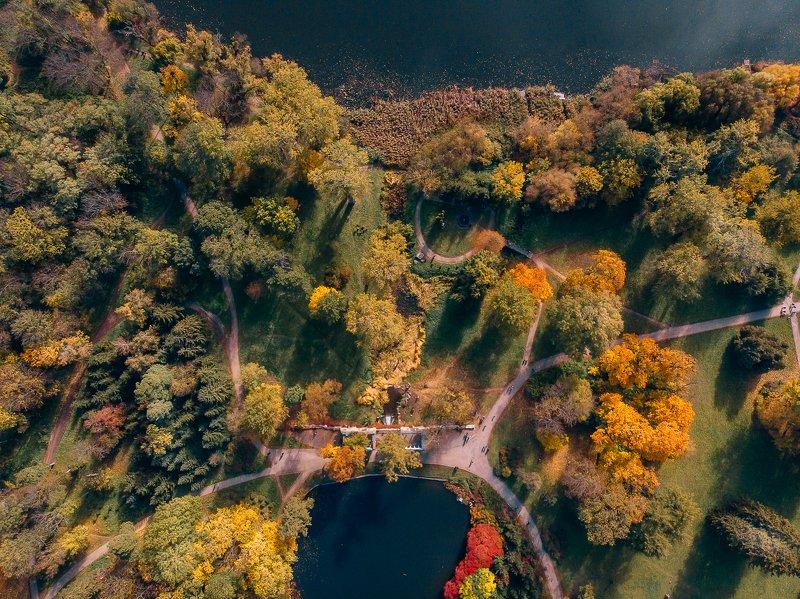 осень, дрон, парк, мавик, эир, dji, golden, nature Осень в Александрииphoto preview