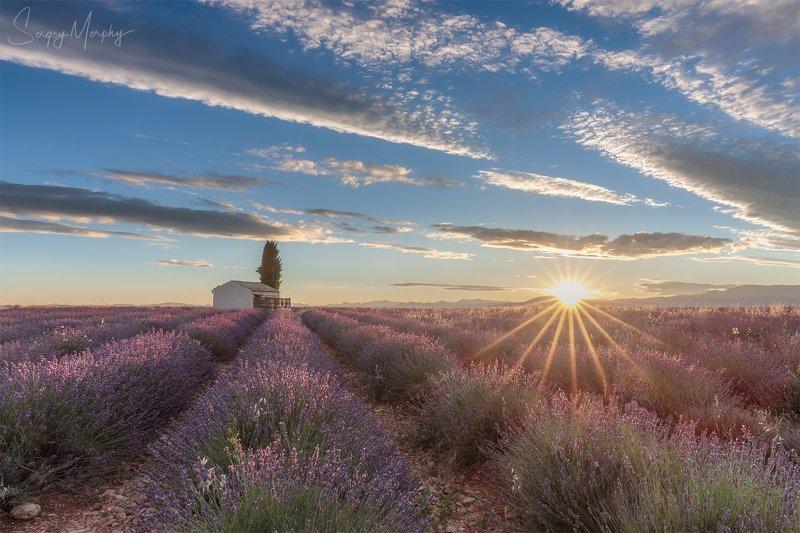 sunrise lavender fields Sunrise on Lavender fields.photo preview