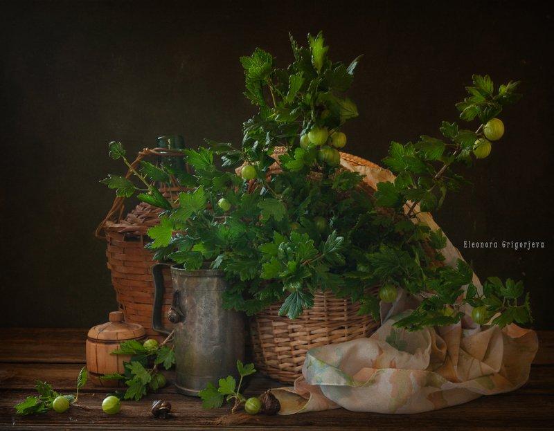 Натюрморт с зелёным крыжовникомphoto preview