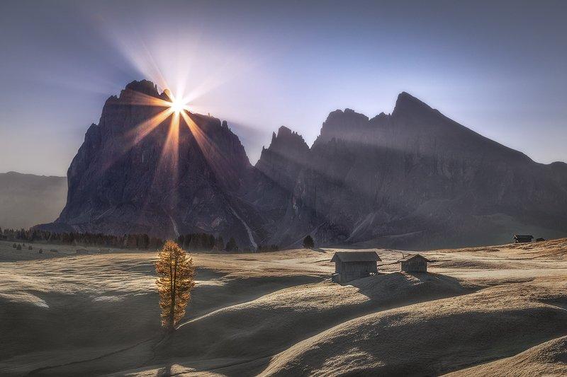 Magic of Alpe di Siusiphoto preview