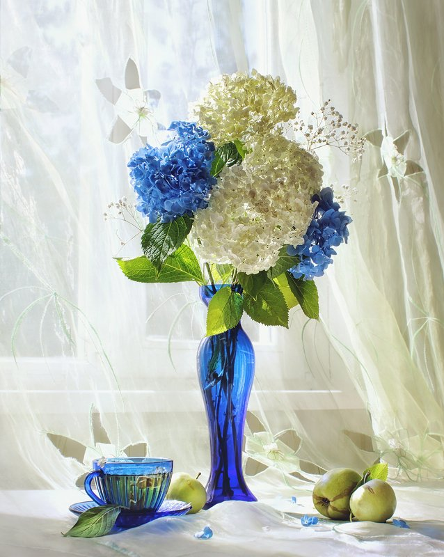 натюрморт, цветы, гортензия, окно, свет, синий, яблоко, букет, ваза, утро, лето Летнее утроphoto preview