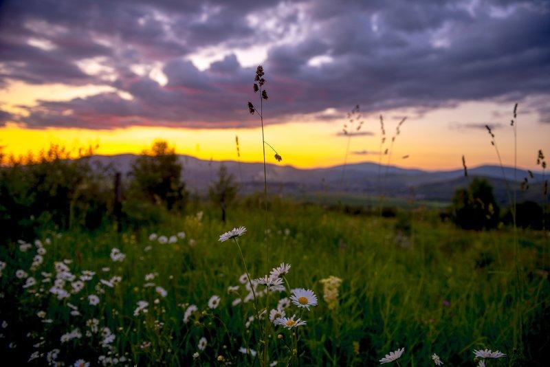 казахстан, алтай, рудный алтай, горы, Рудный Алтайphoto preview