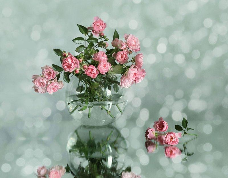 натюрморт, букет, розы, ваза, боке, отражение Розочкиphoto preview