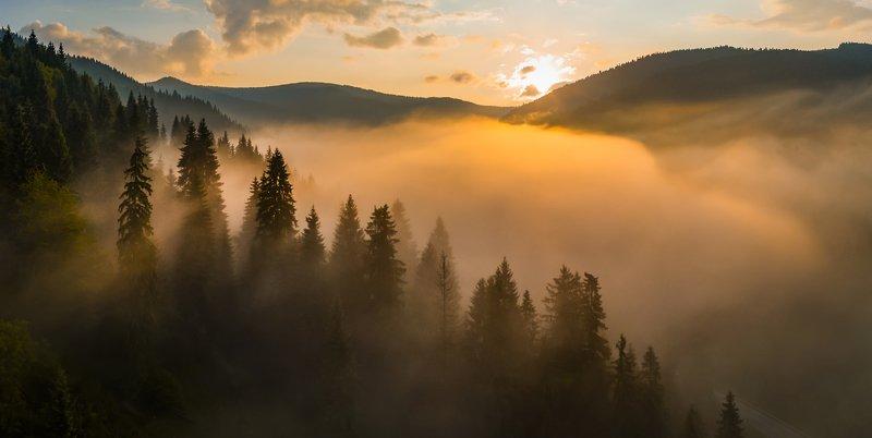 карпаты, туман, рассвет Запах осениphoto preview