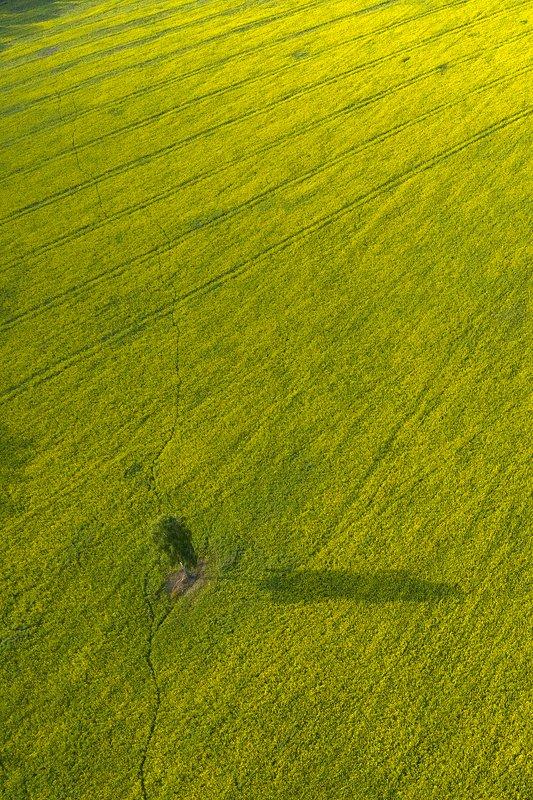 Природный минимализмphoto preview