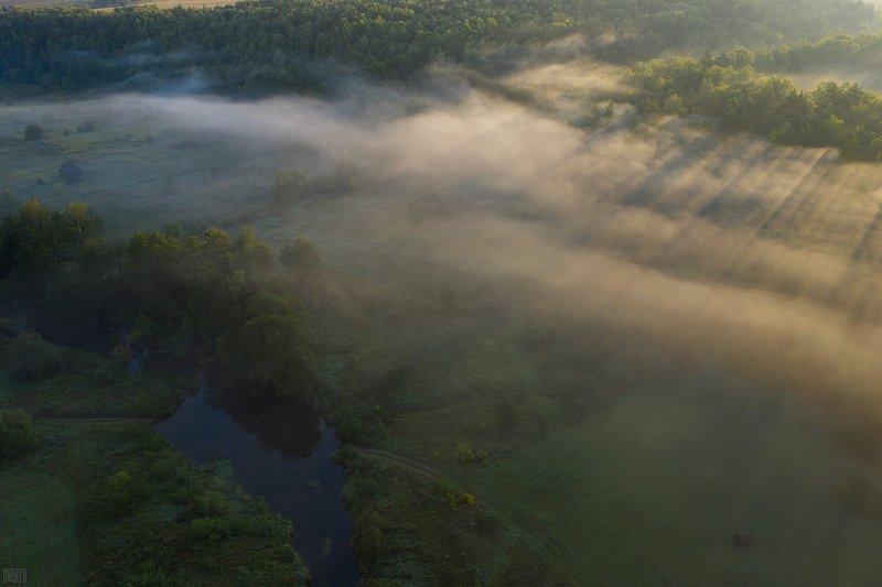 Утро в окрестностях реки Вашана.photo preview