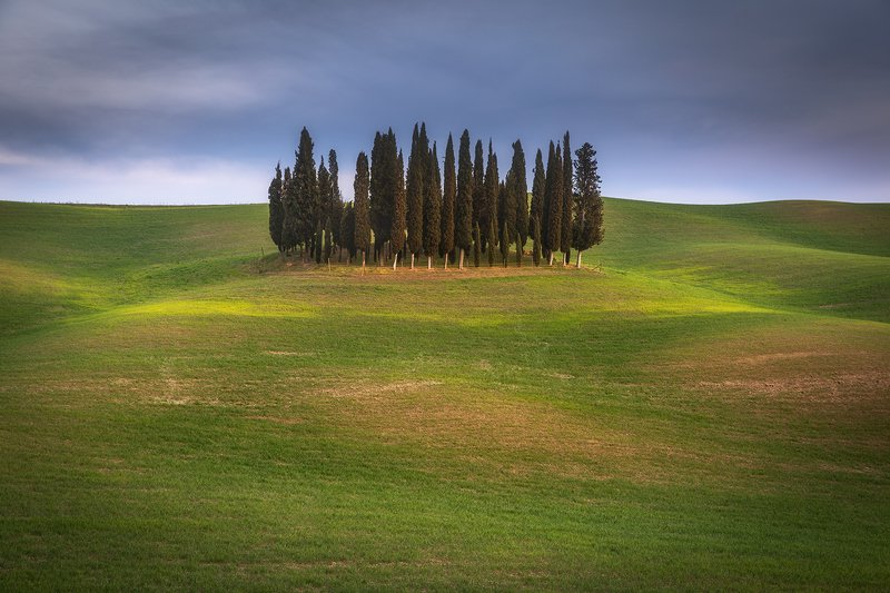 Guardians of Tuscanyphoto preview