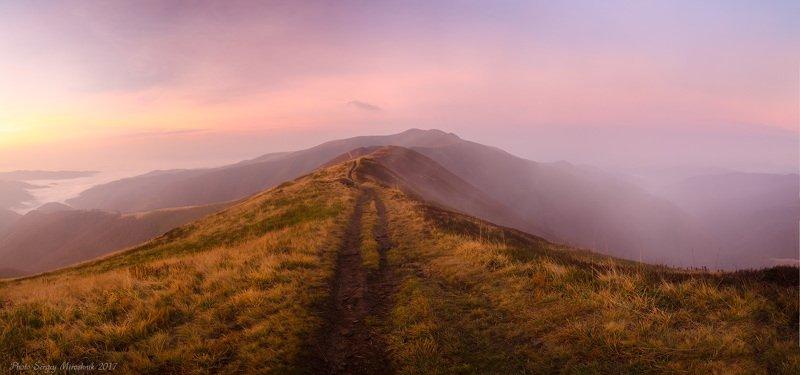 пейзаж, природа, горы осень, туман, утро, путешествие, трекинг, тропа, октябрь, украина, карпаты Боржавской тропойphoto preview