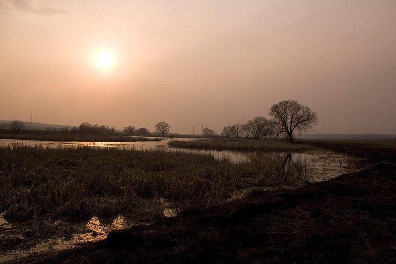 закат, природа, сеньково Закат на планете Земля 2photo preview