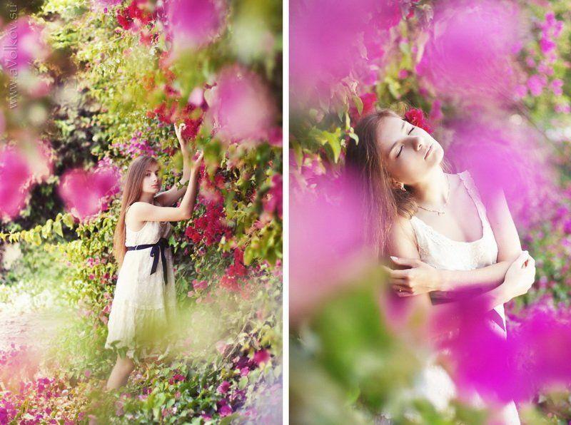 flower princessphoto preview