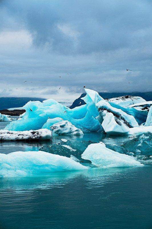 iceland, iceberg, glacier, lagoon, blue, исландия, ледник, лагуна, голубой, айсберг [icebergs of the glacier lagoon]photo preview
