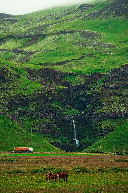 iceland, waterfall, horse, исландия, водопад, лошадь. [waterfall]photo preview