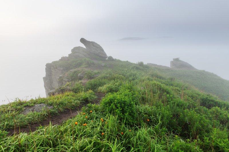 Берег Парящей черепахи и скала Пьющий верблюдphoto preview