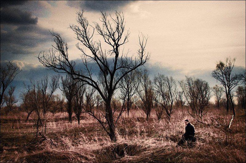дерево Один...photo preview