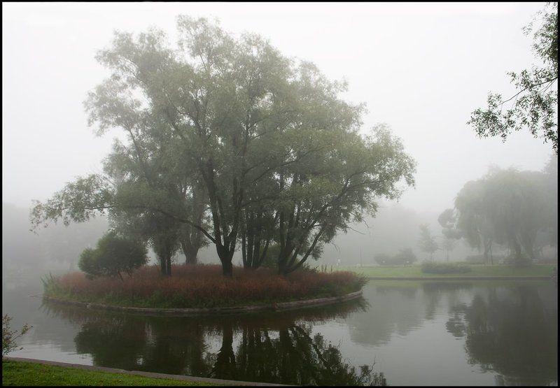 санкт-петербург, юсуповский сад, туман Пробуждение. Юсуповский садphoto preview