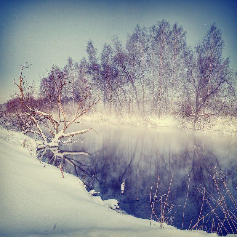свислочь, река, туман, мороз, отражение, коряга | Туманное зеркало |photo preview