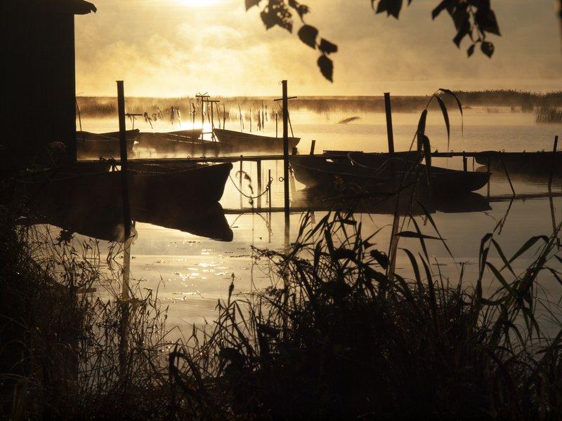 Утро в теплом монохромеphoto preview