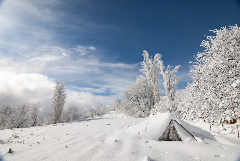 snow, winter, trees, road, sky, cloud, mountains, whitephoto preview
