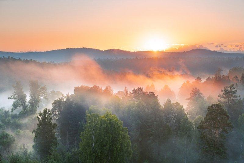 Красота летнего утраphoto preview
