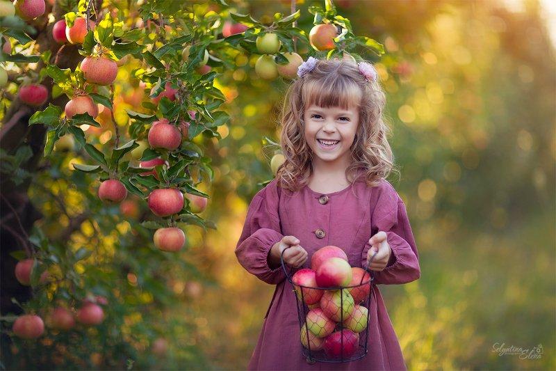 яблоки, apple, детская фотография, детская съемка, яблоневый сад, дети, kids, children photography Яблочное настроениеphoto preview