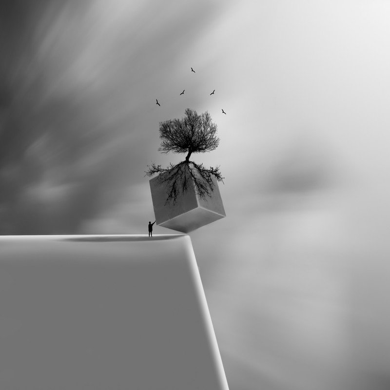 #35photo #surrealart#ps_fantasy#art_minimal #bnw_dream #photography#minimalism#conceptual#fineart #instagram#iranfeature#bnwminimalismmag#art_digital #ir_photographer#ir_aks #photographize#blackandwhite#bnw_greatshots  #surreal#hadimalijani#art#fantastic_ Cubephoto preview