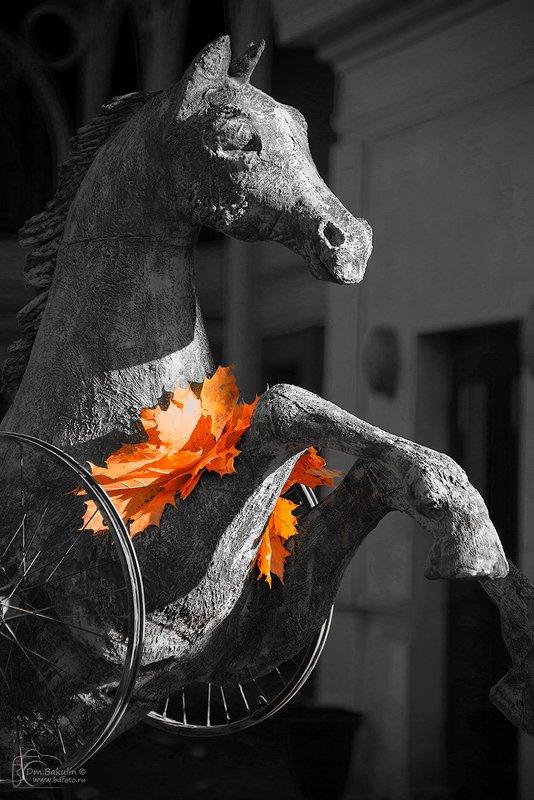 конь Конь осенний педальныйphoto preview