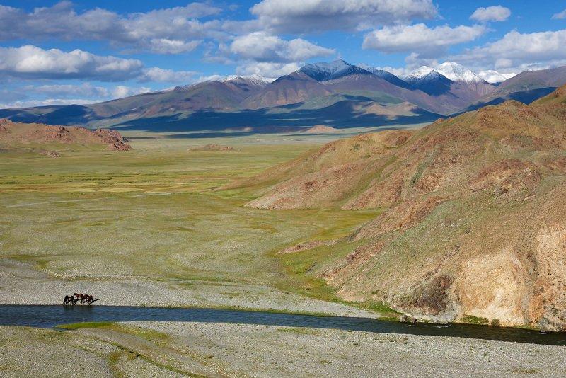 Монголия Пить...photo preview