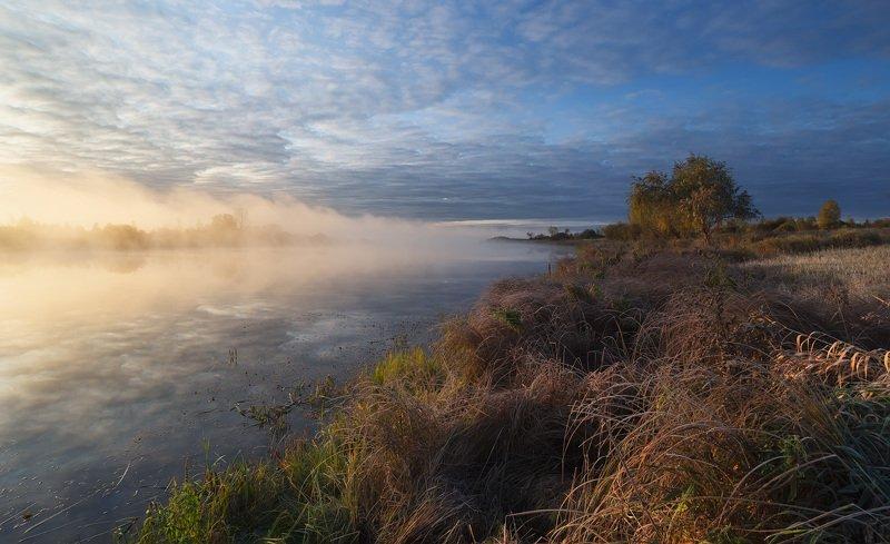 осень, сентябрь, озеро, туман У озера.photo preview