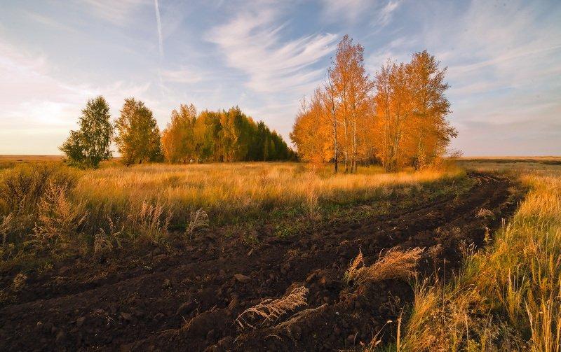 степь сенокос степь вечер закат Осенняя прелюдияphoto preview