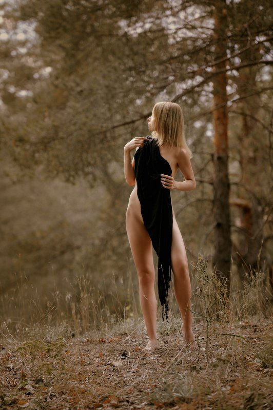 konstantin skomorokh константин скоморох kiev киев severodonetsk северодонецк ню art nude fine art ukraine Renaissancephoto preview