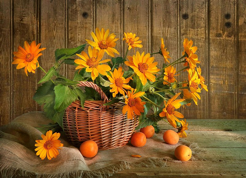 натюрморт,корзина,цветы,абрикосы,мешковина Желтые цветыphoto preview