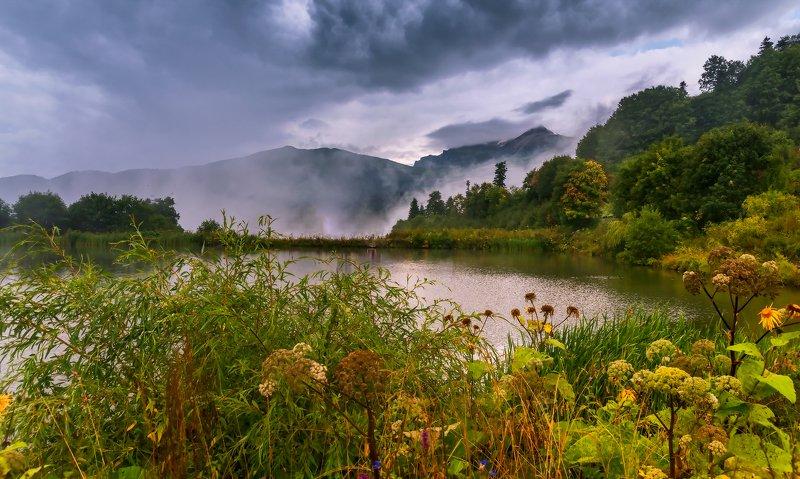 Дождливый вечер 17го августаphoto preview
