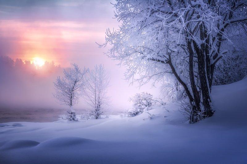 В гостях у зимыphoto preview