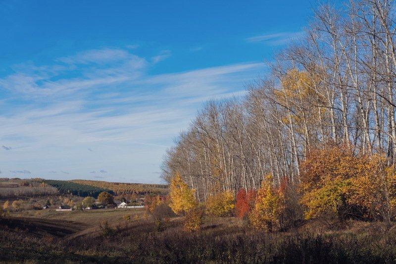 осень октябрь деревня Октябрь (деревенская версия)photo preview